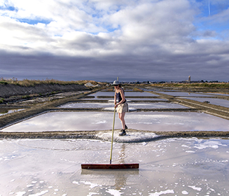 The Guérande Salt