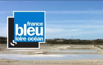 France bleue Loire Ocean : LA NOUVELLE ECO