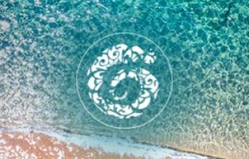 Les trésors de la cosmétique marine