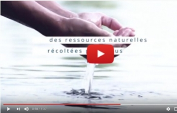 DISCOVER GUÉRANDE COSMETICS ON VIDEOS